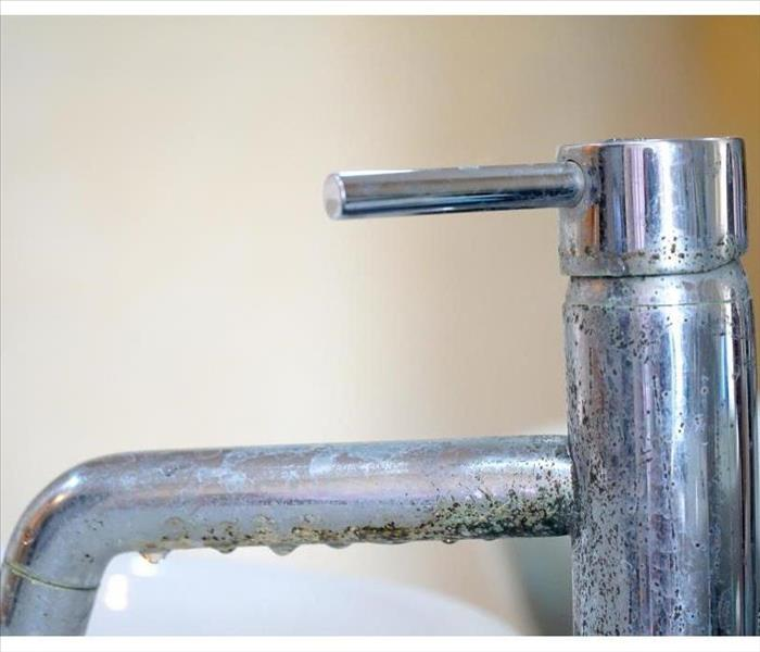 A faucet covered with mold