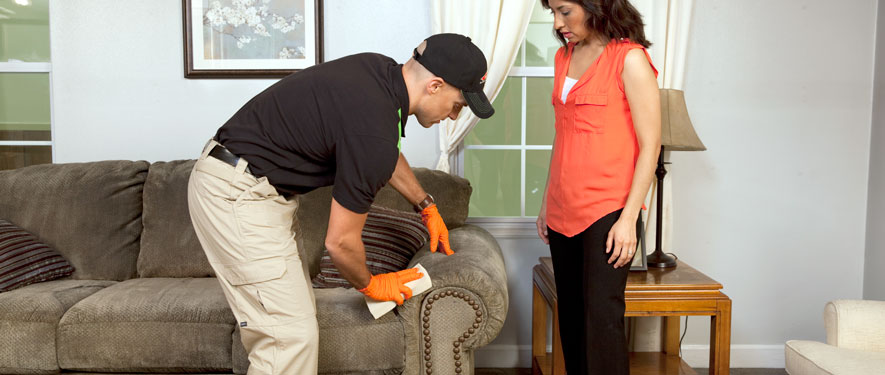 Clear Lake, TX carpet upholstery cleaning