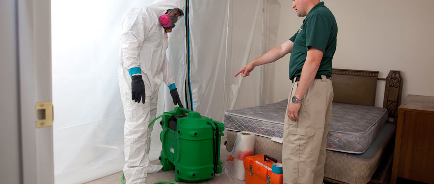 Clear Lake, TX mold removal process